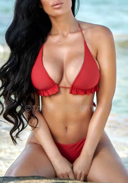 European and Worldwide Escorts
